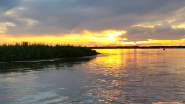 Río Paraná im Morgengrauen