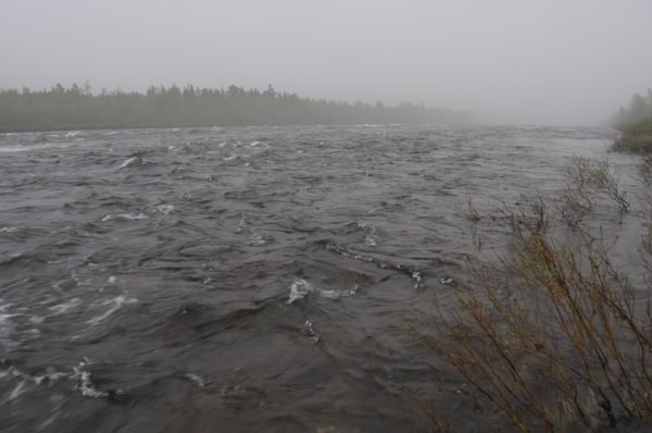 Fluss im Nebel