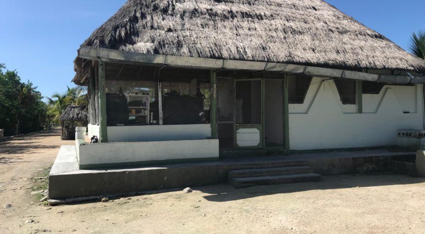 Espiritu-Santo-Bay-Lodge-Oktober-2019-Airport-DSchungel