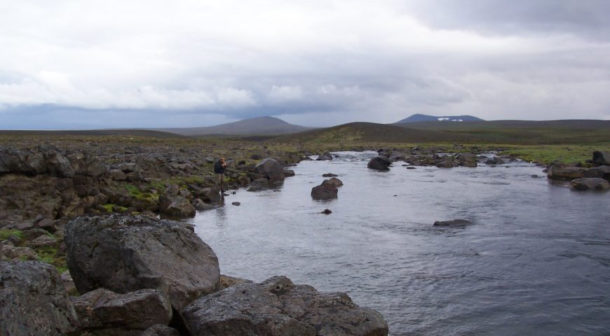Highlands-Forelle-Char-21