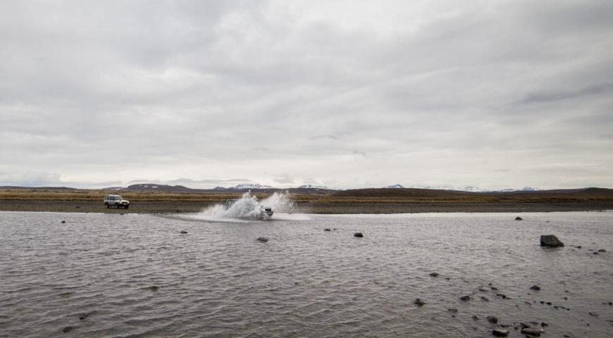 Highlands-Forelle-Char-9