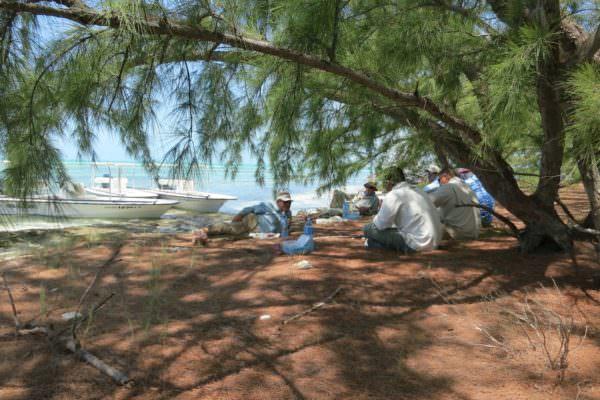 Lunch am Strand con Cayo Largo