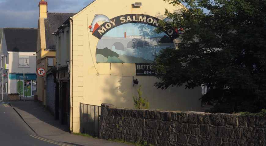 Irland-Lachs-Galerie-Moy-Foxford