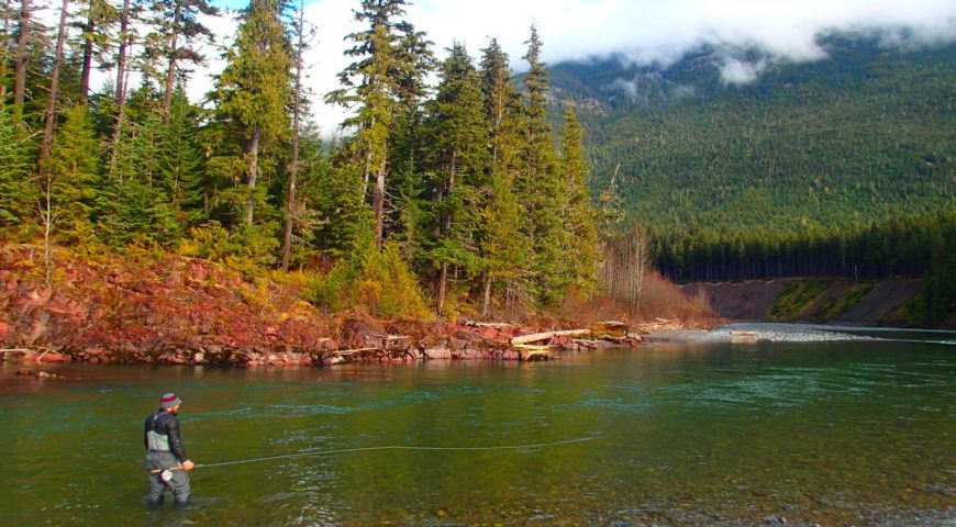 Kanada-Williams-Creek-Lodge-Gallerie-Swing-The-Green