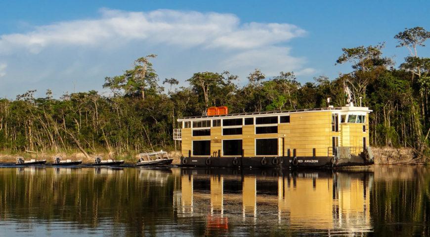 Marie-Galerie-Untamed-Amazon-Dschungel