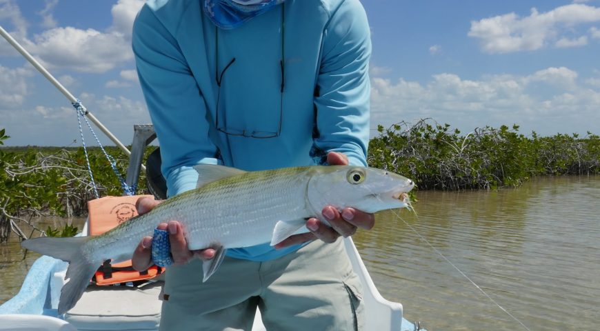 Mexiko-Punta-Allen-Fishing-Club-Bonefish