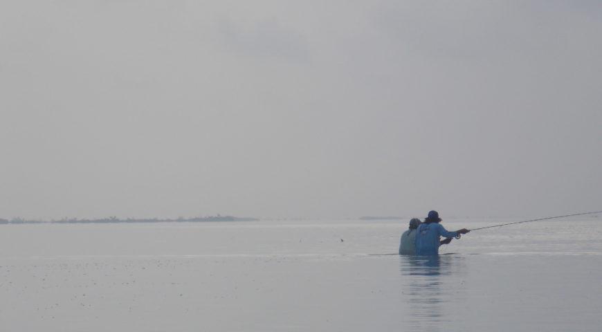Mexiko-Punta-Allen-Fishing-Club-Tailing-Permit