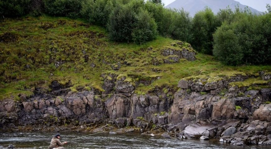Nordura-fullservice-Landschaft