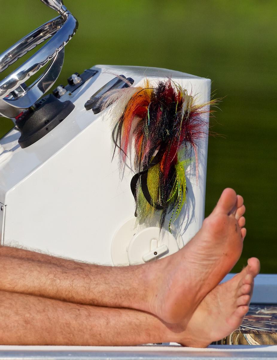 Pirarucu-Fliege-Füße