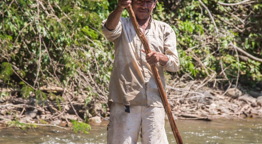 Pluma-Native