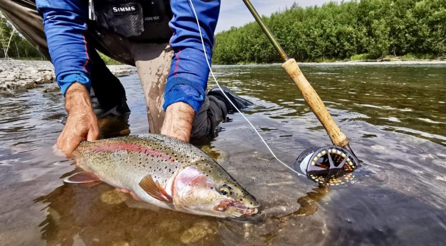 Russland-Kamchatka-Icha-River-Camp-Forelle-Streamer