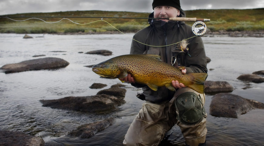 Russland-Varzina-Trout-Tented-Camp-Traumfisch-gelb