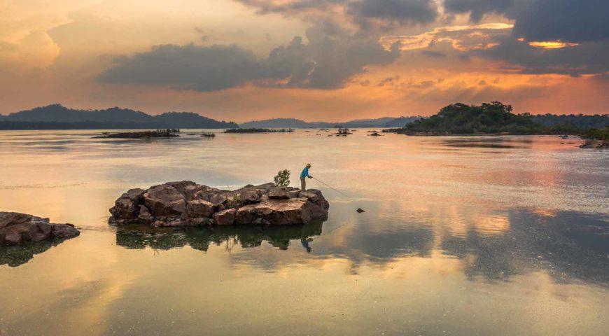 Xingu-Sundown-Fish