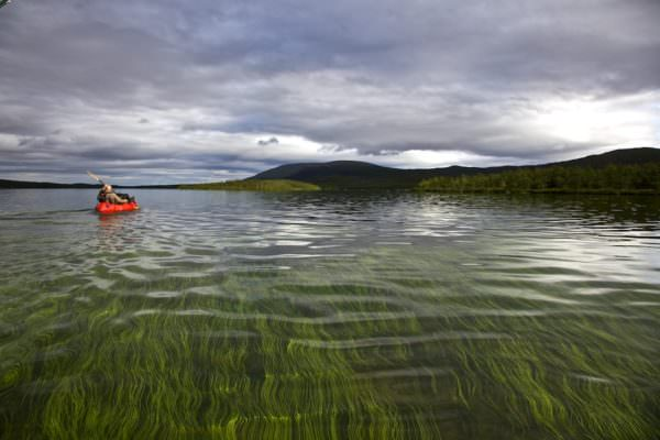 Floating Lappland